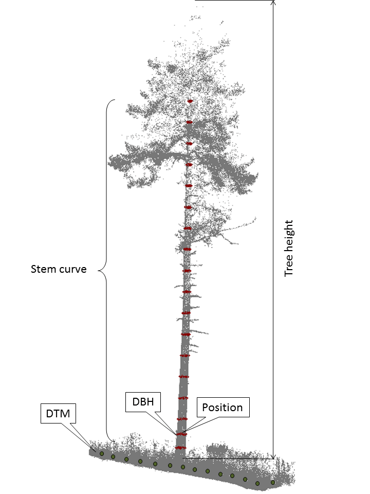 Five criteria extracted from TLS data at the plot- and tree-level
